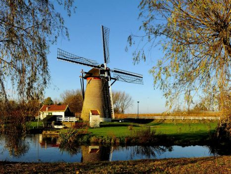 Wippersmolen, Maassluis - South Holland, The Netherlands