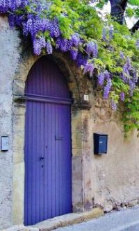 Purple Front Gate