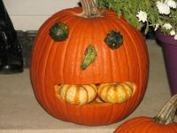 Pumpkin by Kevin