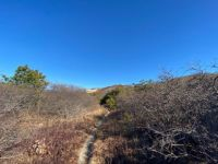 North Pamet Trail