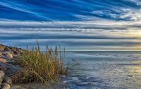 Wadden Sea (North Sea coast, Germany)