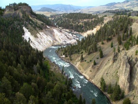 Yellowstone River, near Tower-Roosevelt, Yellowstone National Park