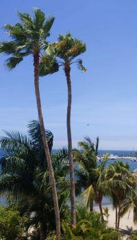 Puerto Vallarta Condo - View_LOOB5951 (2)