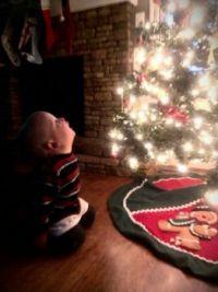 Cole's Christmas tree