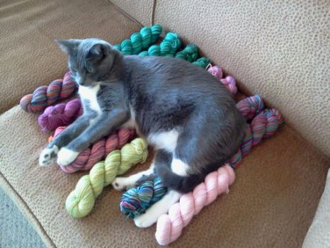 The yarn is mine!