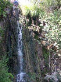 Japanese Tea Garden waterfall, San Antonio, Texas
