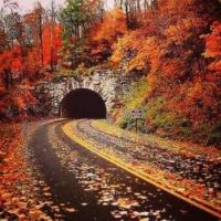 Highway to the tunnel during autumn rain