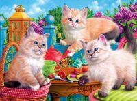 Garden Cats #3