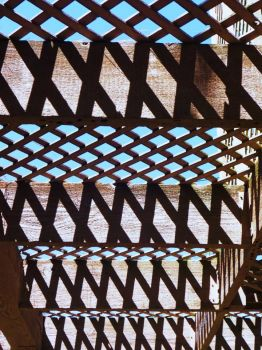 Trellis and Shadows