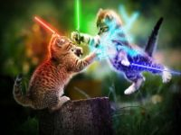 cats_lightsabers
