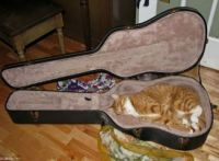new use for old guitar case