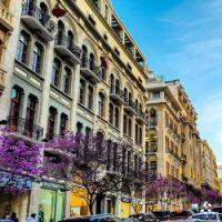 printemps à Beyrouth 1604950_736422319809215_1209559637758941640_n