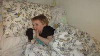 Piggly's in Danma's bed!