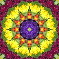 kaleidoscope 325 colours large