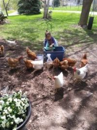 brook and her chickens