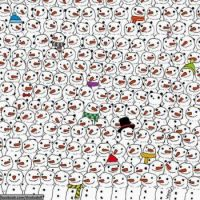 Where's the panda?