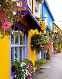 Colorful Street Scene