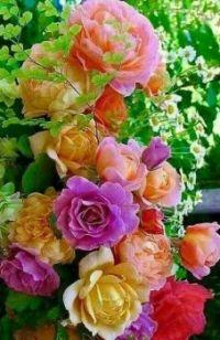 Bouquet #89