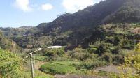 063-Madeira