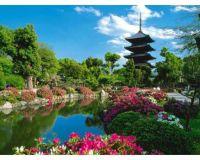 Amazing gardens (12)