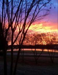 It's A Beautiful Morning !