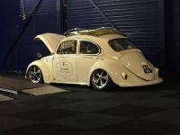 Old Beetle