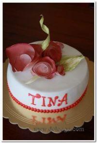 Happy Birthday Tina!