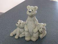 Shannon's bears
