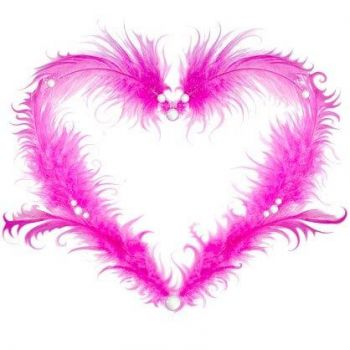 Pretty Pink Feather Heart..