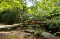 Miyajima trail