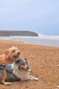 Lara en Lizzi op het strand