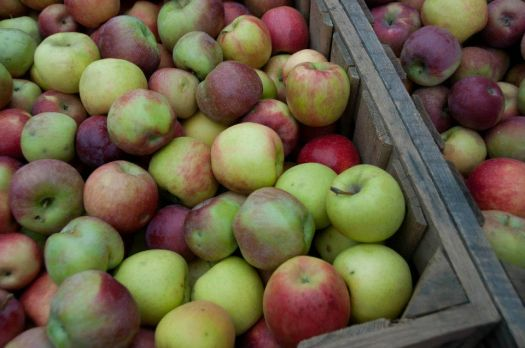 Lull farm apples