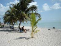 beach at Isla Iguada