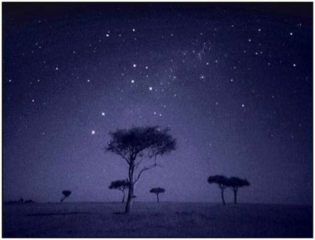Africian stary night