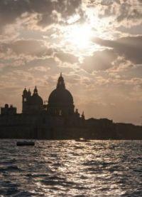 Back Lit Venice-1