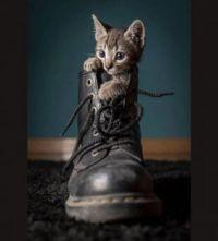My Boot!