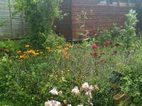 Gardening?