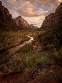 emerald-lakes-trail-zion-national-park-
