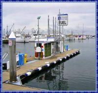 Marina in Nelson Bay.