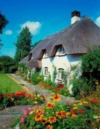 Thatched Cottage ~ England