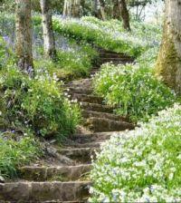 Schody jara_Spring stairs