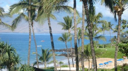 Theme: The Jewel Island of Lanai