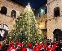 Fat Christmas tree :)