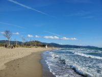 beach at Maremma Park, Italy