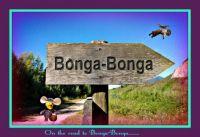 On The Road To Bonga-Bonga.....
