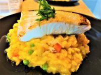 Saffron risotto and pan seared halibut