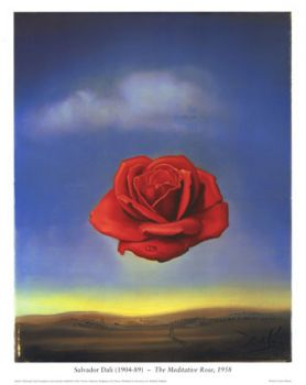 Salvadore Dali- Meditative Rose
