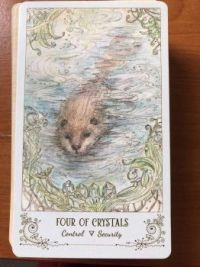 Tarot ~~ 19 October