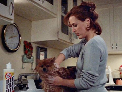 "Scully bathing her dog Queequeg in the X-Files episode ""War of the Coprophages"""