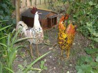 Garden - Yard Art - Chickens Hens Roosters Cockerels & Hedgehog House